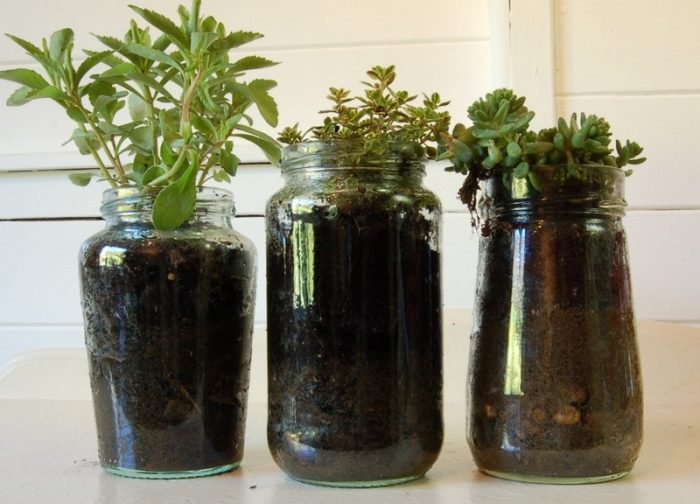 20 ways to recycle and reuse glass jam jars vicky myers for Reuse glass