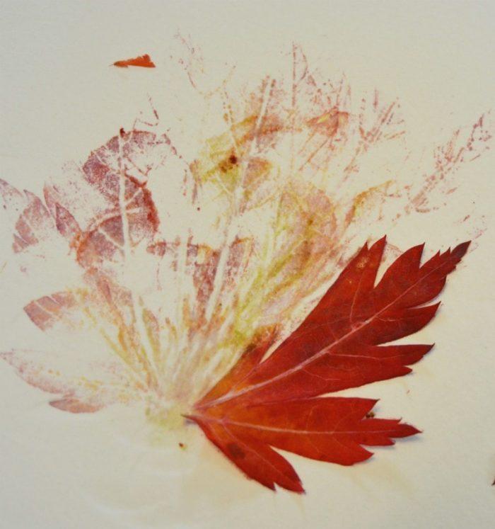 Red leaves, leaf print