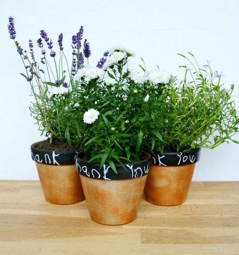 Quick and effective plant pots – Teachers gifts