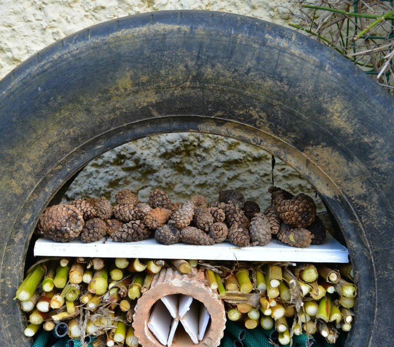 pine-cone-layer-of-recycled-tyre-bug-hotel
