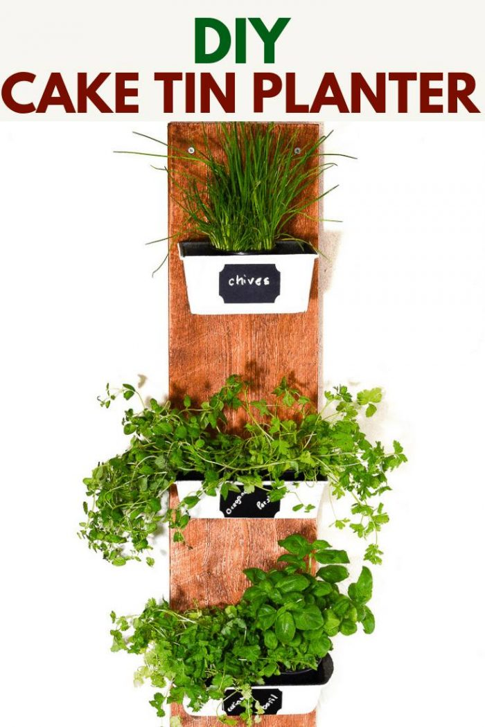 Do you have rusty cake tuins waiting to be upcycled? Transform them with this DIY House plant container. Follow the tutorial to upcycle the cake tins into plant pots #Herbplanter