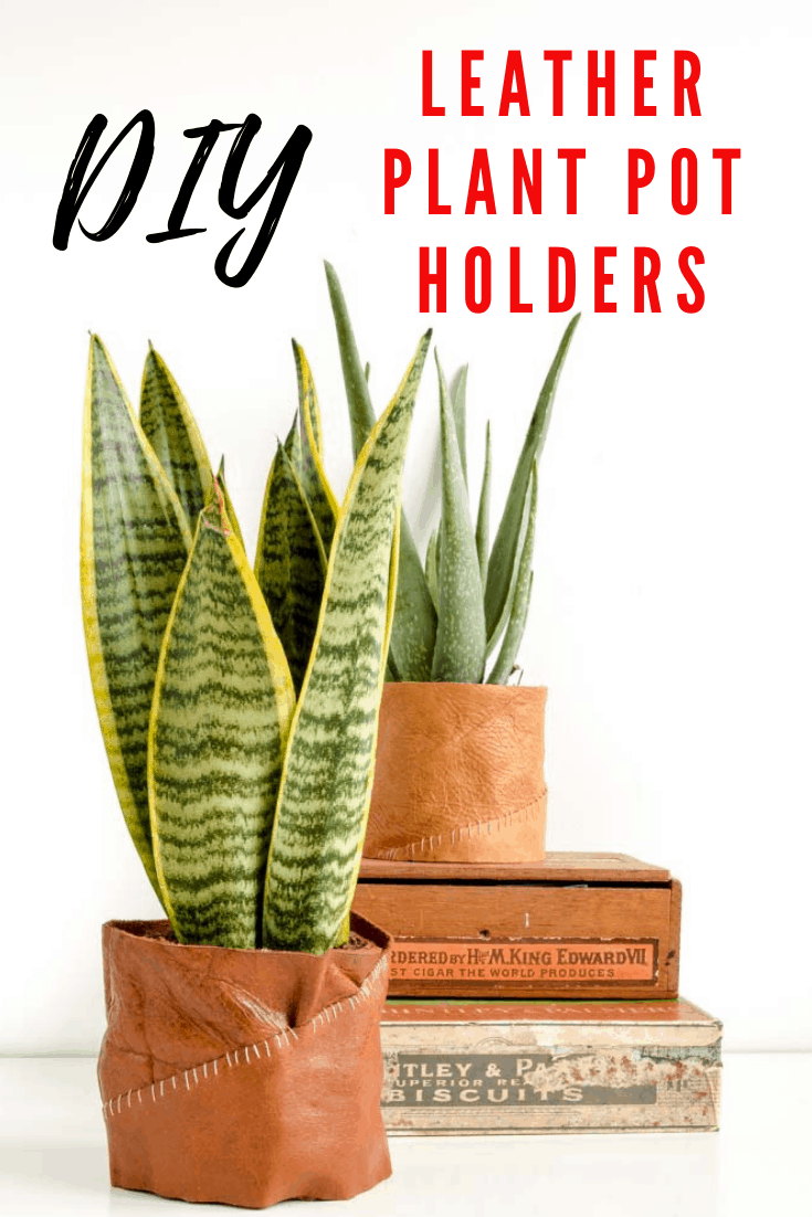 DIY Leather plant pot holder, DIY Plant Pot, Leather Gift